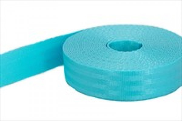 5m safety webbing - turquoise - made of polyamide - 25mm wide - load capacity: up to 1t
